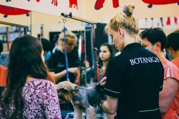 Марія Захарченко власниця салону і SPA-центру для домашніх тварин: «Успіх – постійна робота над собою»