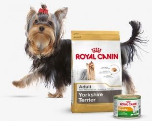 Огляд корму для собак Royal Canin: відгуки і розбір складу